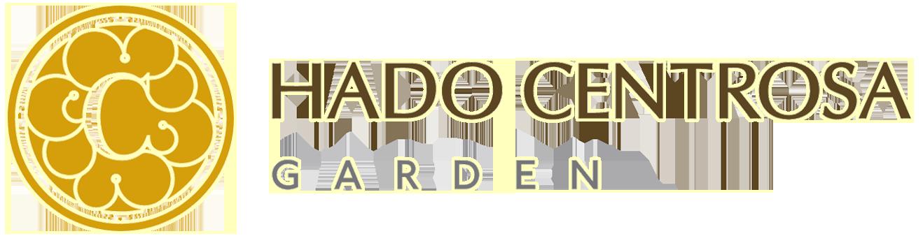 Căn hộ Hado Centrosa Garden Quận 10